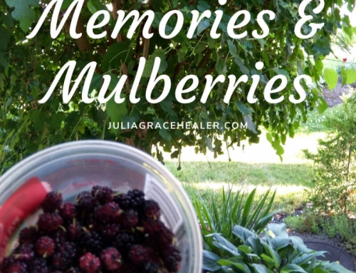 Memories and Mulberries