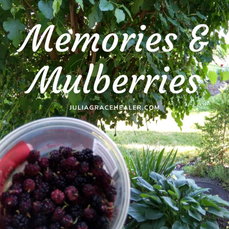 Memories and Mulberries